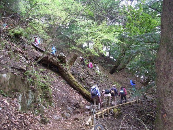 大山詣り3