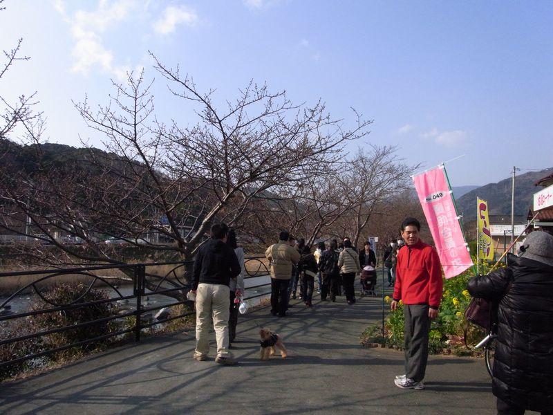 201128kawazu5.jpg
