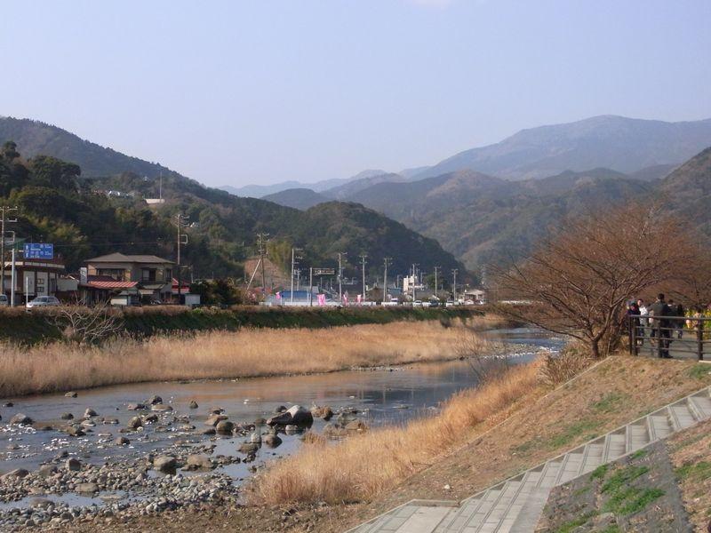 201128kawazu6.jpg