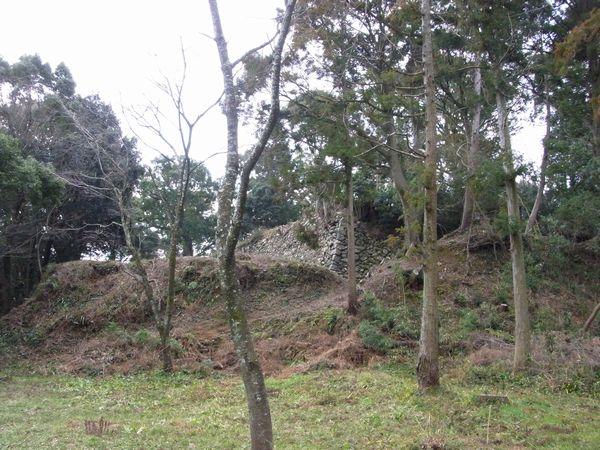 2011311tamaru2.jpg