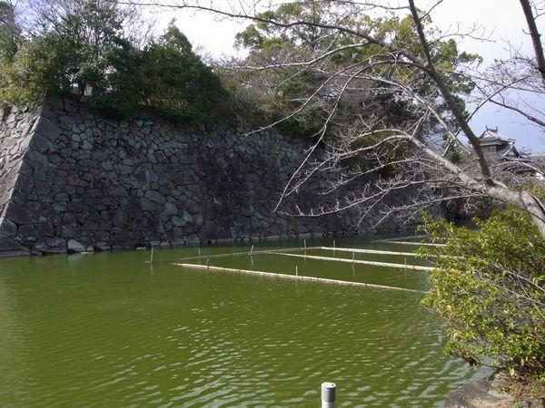 201139kooriyama5.jpg