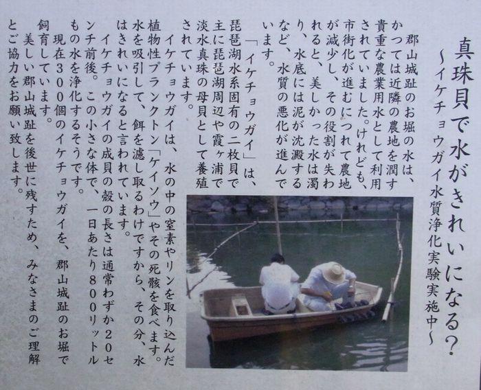 201139kooriyama6.jpg