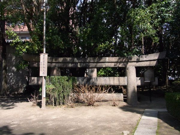 201139tamatulkuri3.jpg