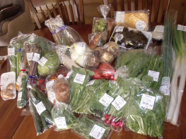 20110424 春野菜