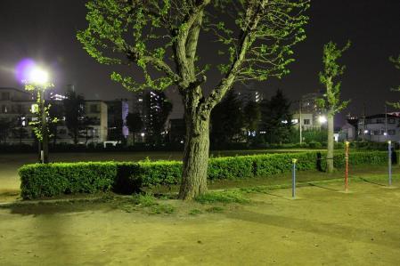 20110426某公園