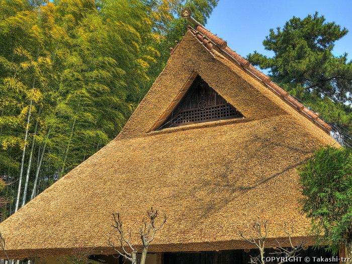 旧泉家住宅