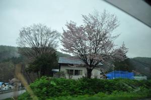2011・5・21帯広へ行く途中2
