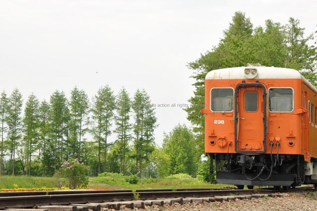 2011・6・18幸福駅2