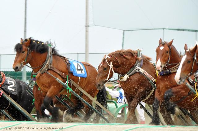 2011・6・18ばんえい競馬5
