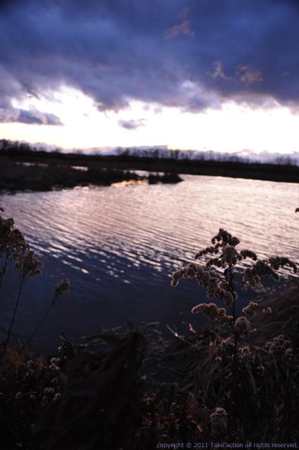 2011・11・20長都沼