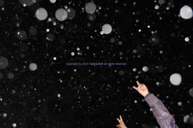 2011雪を撮る