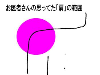 S-kata2