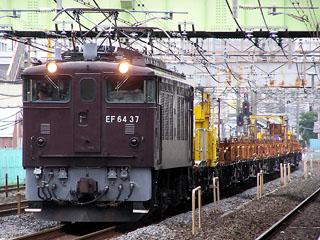 【高崎】EF6437-01