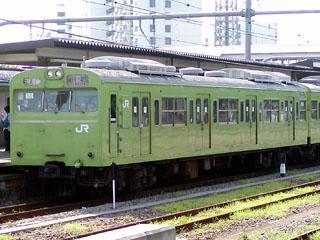 【宮ハエ】ハエ55-01