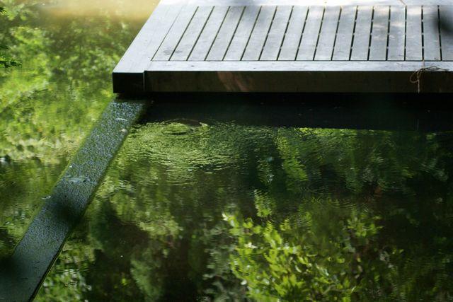 明月院の池に映る緑