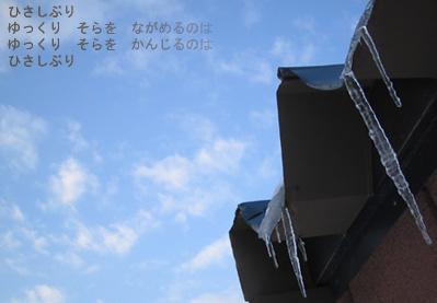 20070121.jpg