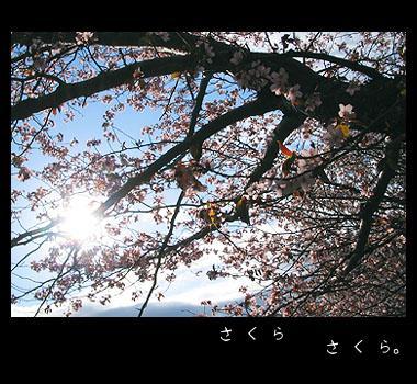 20070506-A.jpg