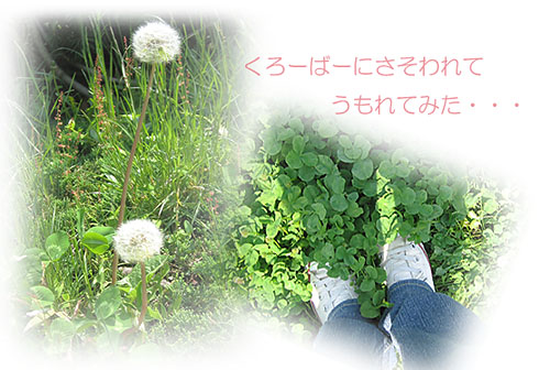 IMG_0757.jpg