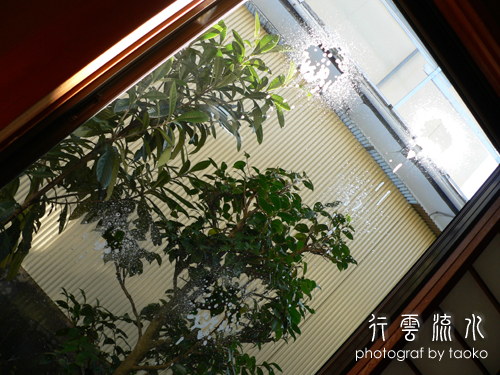 photo51.jpg