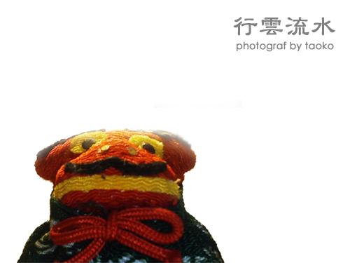 photo65.jpg