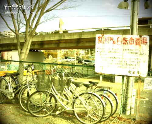 photo69.jpg