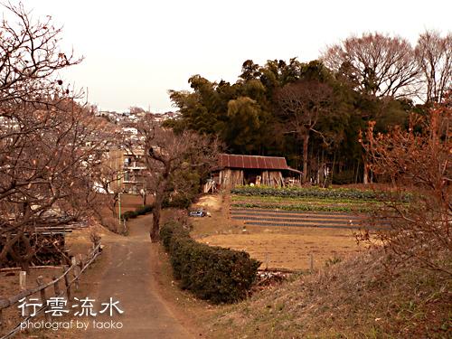 photo73.jpg