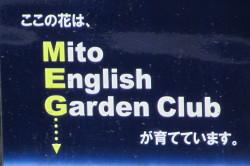 七ツ洞公園0001_1