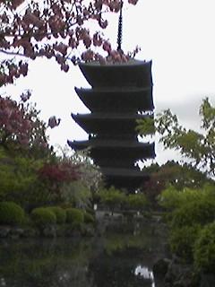 瓢箪池越しの五重塔