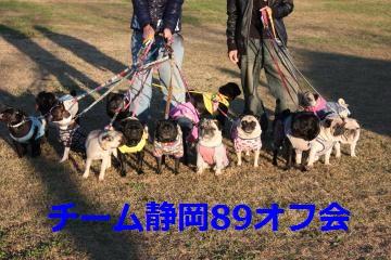 チーム静岡89オフ会