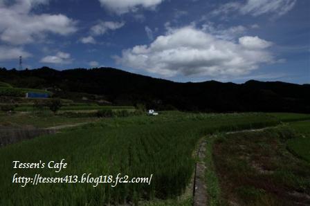 CA63W8TN_20110902092725.jpg