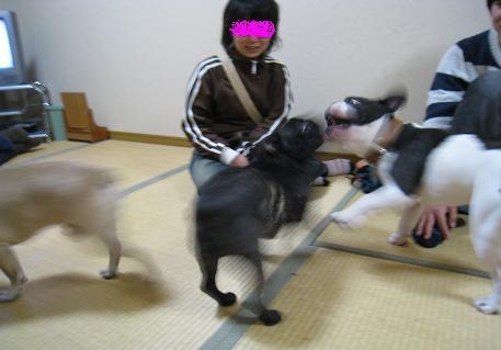 2008020915.jpg