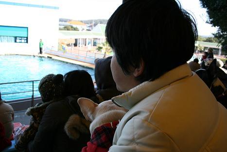 2008021031.jpg
