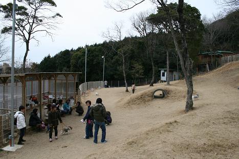 200812018.jpg