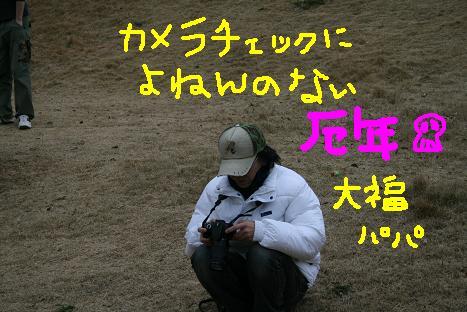 200812047.jpg