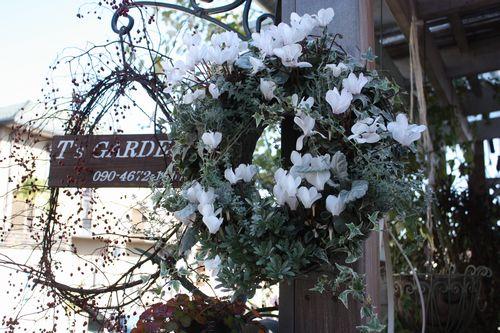 T's Garden Healing Flowers‐Gシクラメンの白いリース