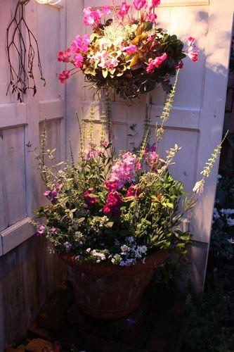 T's Garden Healing Flowers‐店頭の夜景