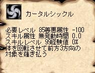 20110410-1