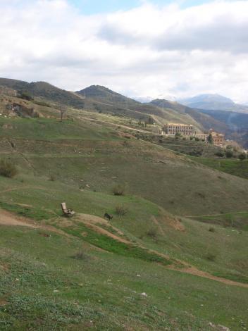 丘の上のアームチェア