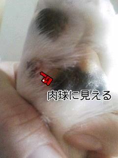 20070227005905.jpg
