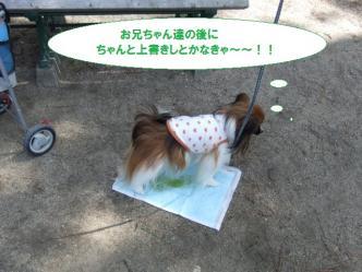 10-07_20110412211013.jpg