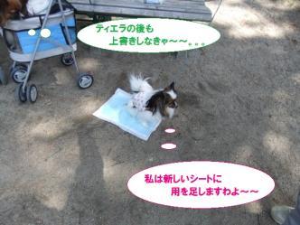 10-08_20110412211010.jpg