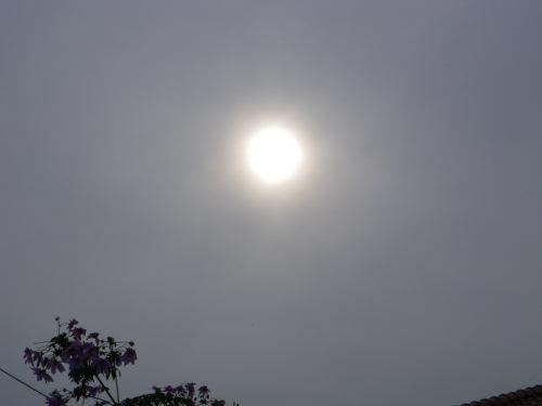 太陽1128