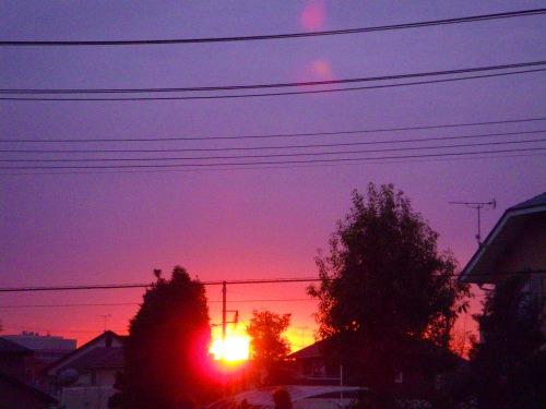 夕陽126