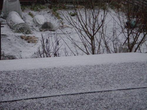 雪降り121