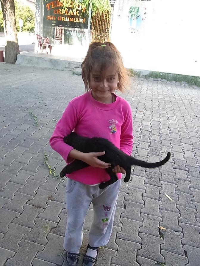 きゃわいい女の子と野良猫