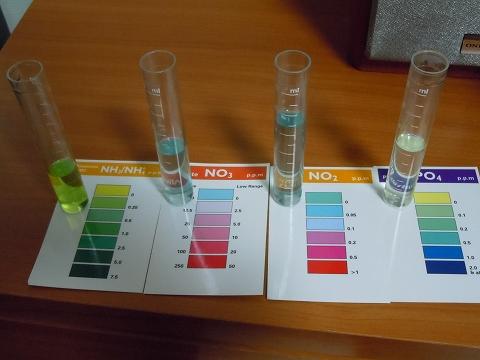 水質検査20110717