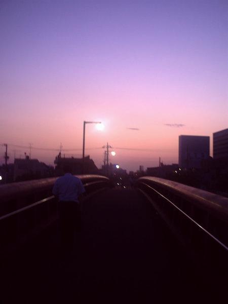 20110705.jpg