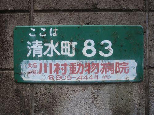 2011_04030272.jpg