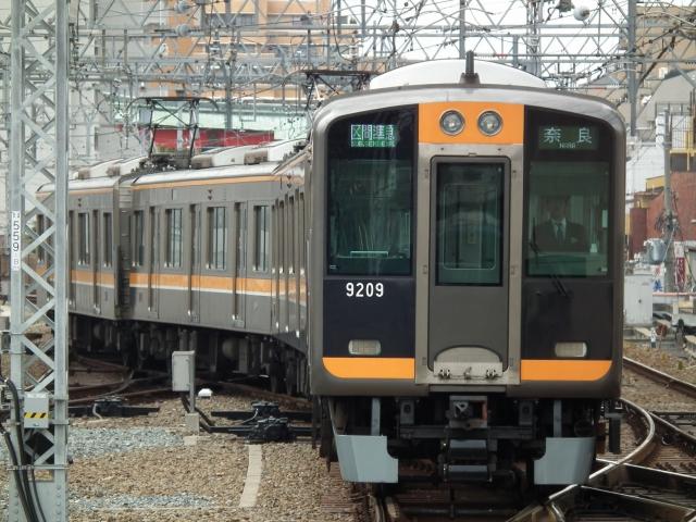 DSCF8282.jpg