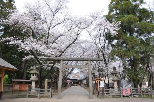 2011年4月18日 上田城千本桜祭2011